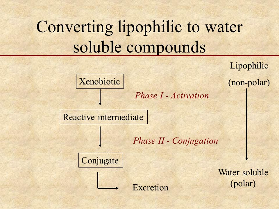 Converting lipophilic to water soluble compounds