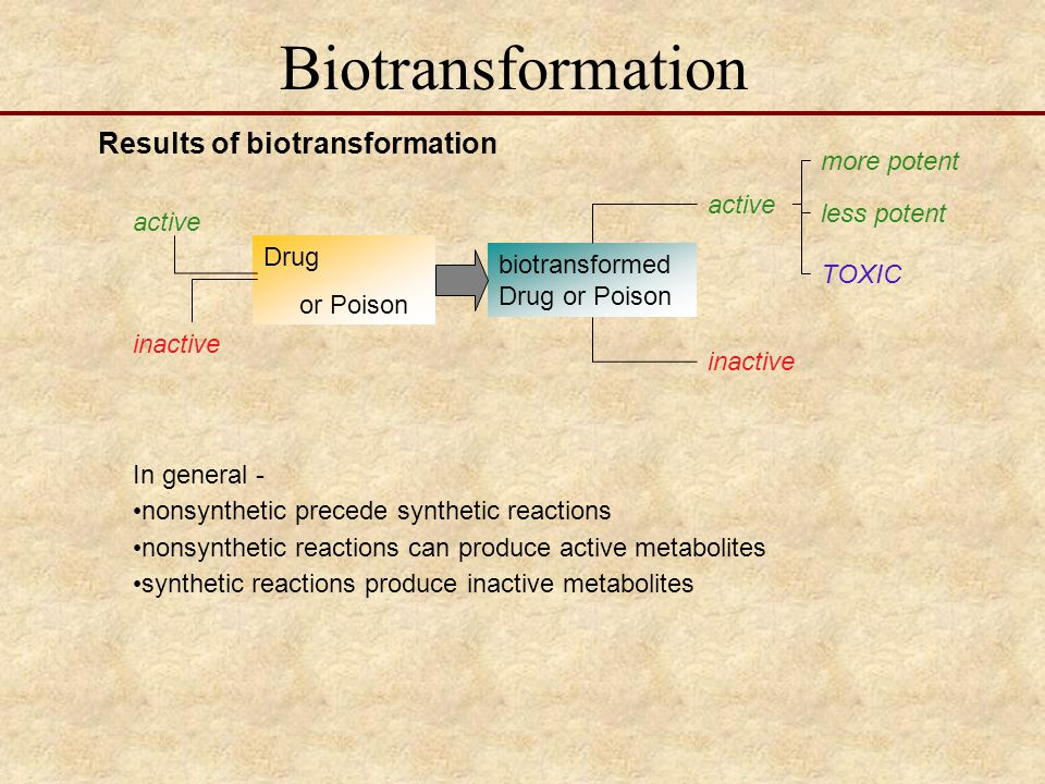 Biotransformation Results of biotransformation more potent active