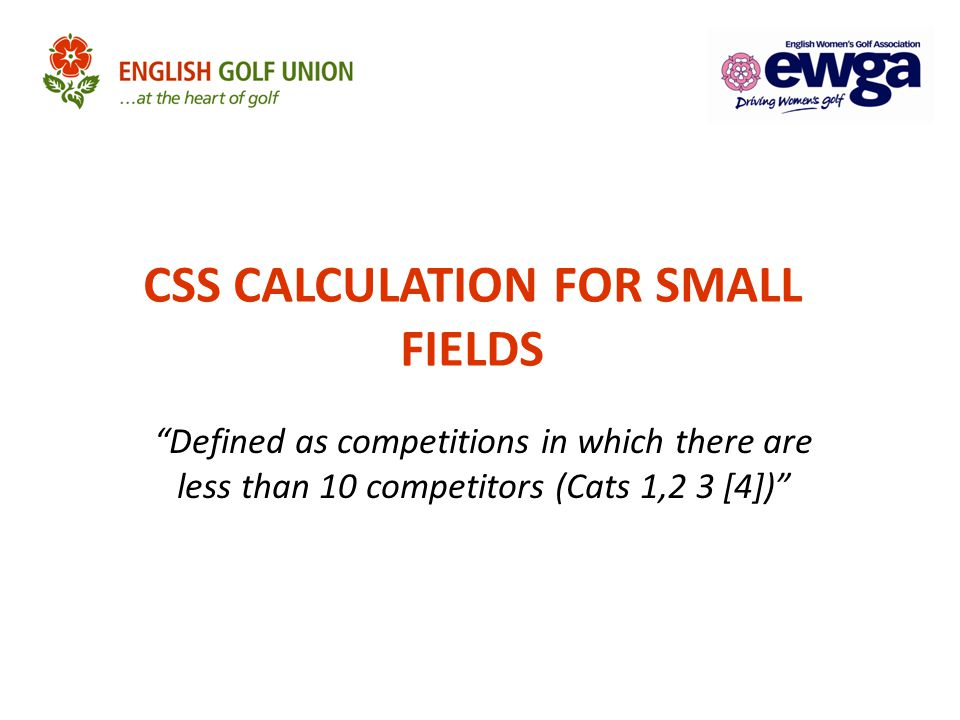 CSS CALCULATION FOR SMALL FIELDS