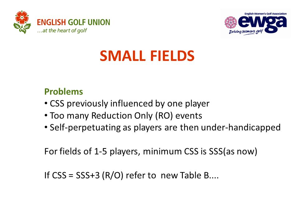 SMALL FIELDS Problems CSS previously influenced by one player