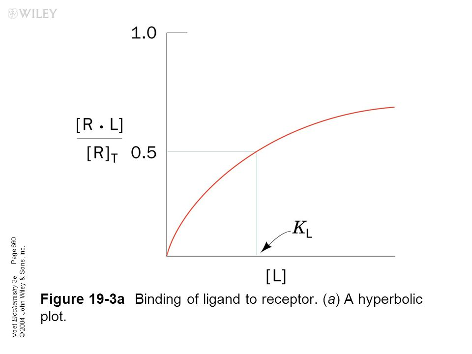 Figure 19-3a Binding of ligand to receptor. (a) A hyperbolic plot.