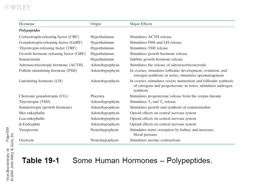 Table 19-1 Some Human Hormones – Polypeptides.