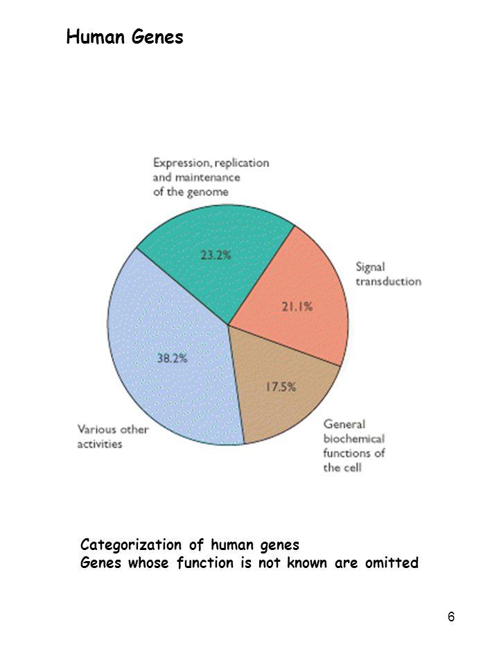 Human Genes Categorization of human genes