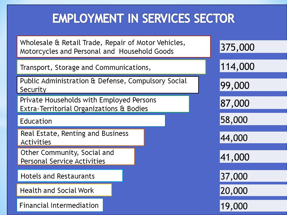 EMPLOYMENT IN SERVICES SECTOR