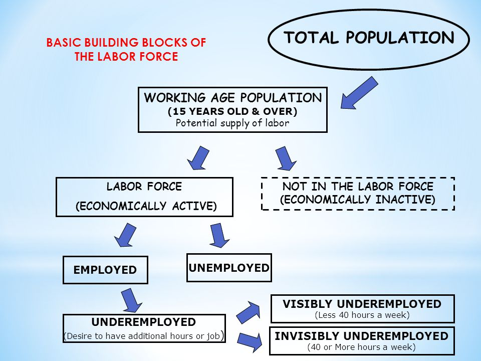 TOTAL POPULATION BASIC BUILDING BLOCKS OF THE LABOR FORCE