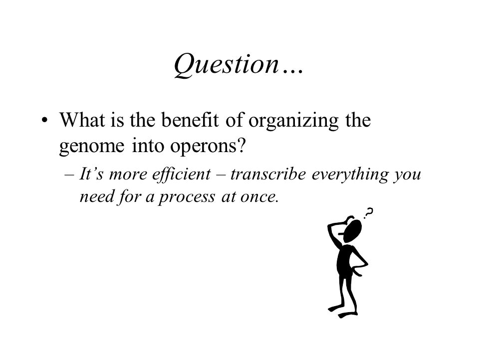 Question… What is the benefit of organizing the genome into operons