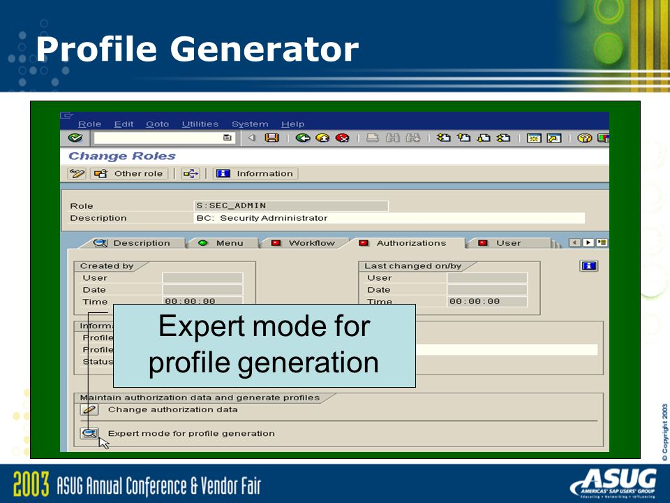 Expert mode for profile generation