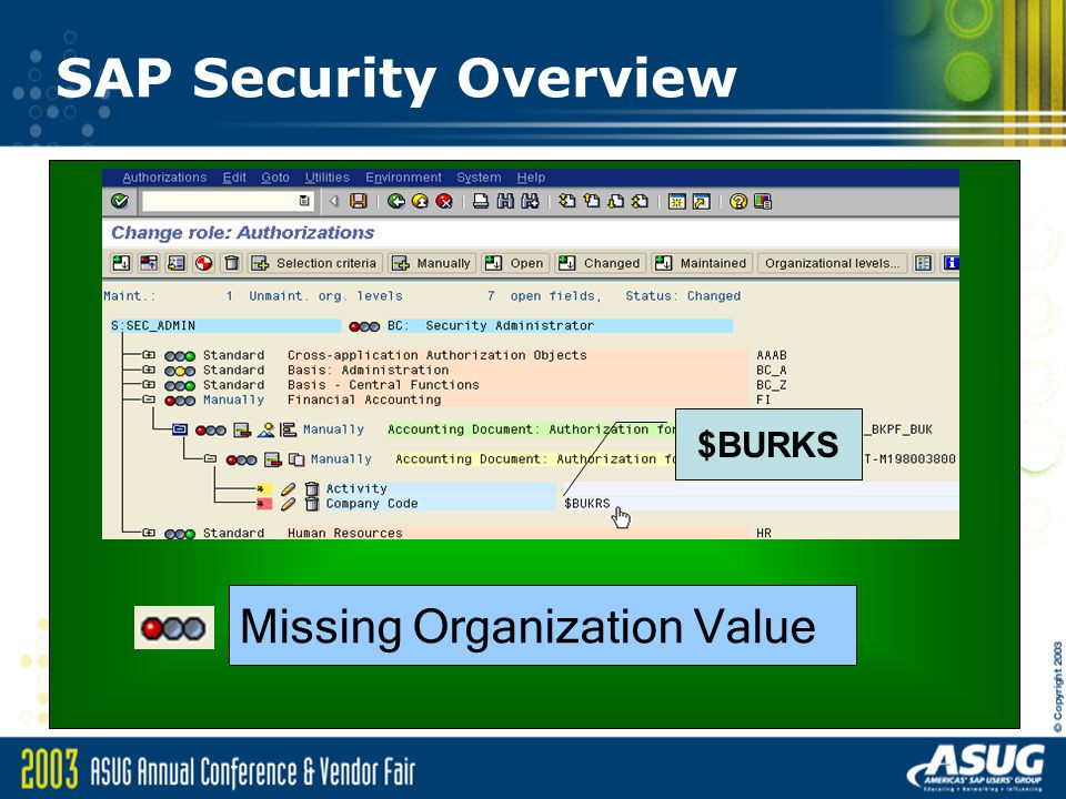 SAP Security Overview Missing Organization Value $BURKS