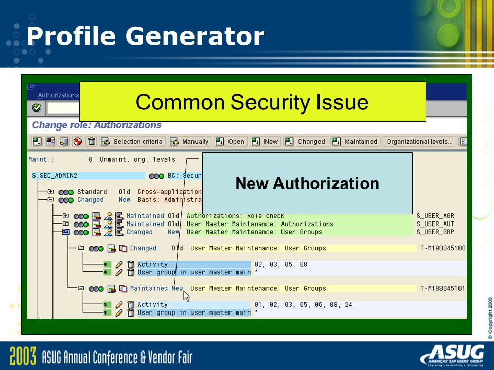 Profile Generator Common Security Issue New Authorization