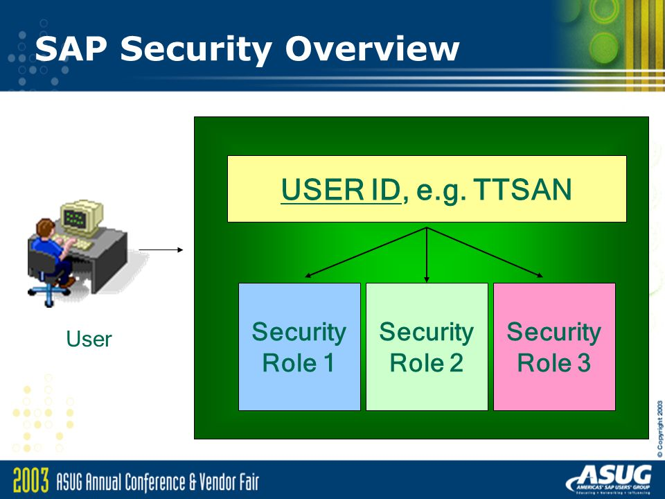 SAP Security Overview USER ID, e.g. TTSAN Security Role 1