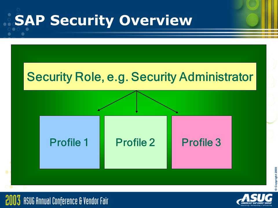 Security Role, e.g. Security Administrator