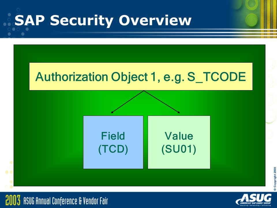 Authorization Object 1, e.g. S_TCODE