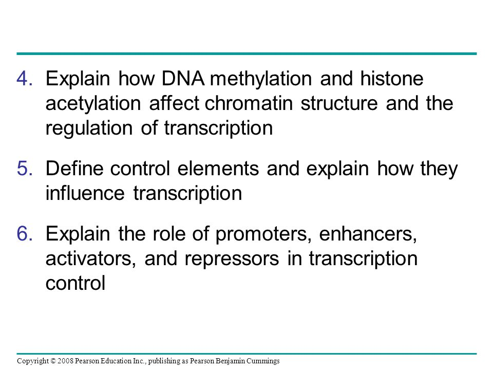 Explain how DNA methylation and histone acetylation affect chromatin structure and the regulation of transcription