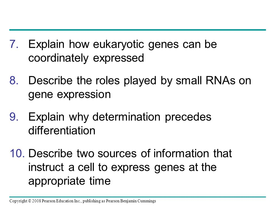 Explain how eukaryotic genes can be coordinately expressed