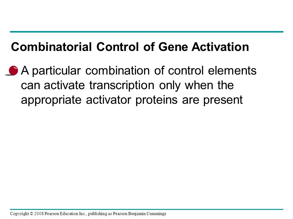 Combinatorial Control of Gene Activation