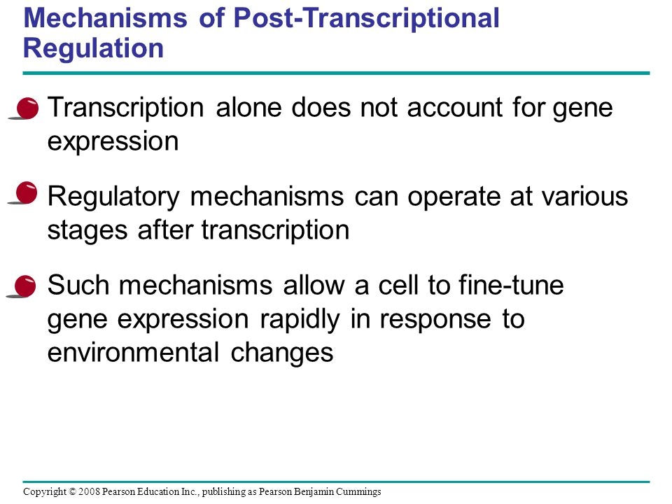 Mechanisms of Post-Transcriptional Regulation