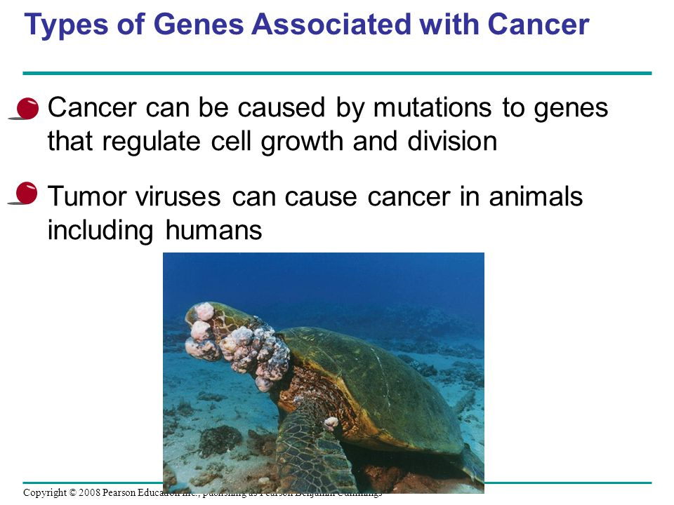 Types of Genes Associated with Cancer