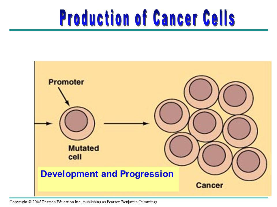 Production of Cancer Cells
