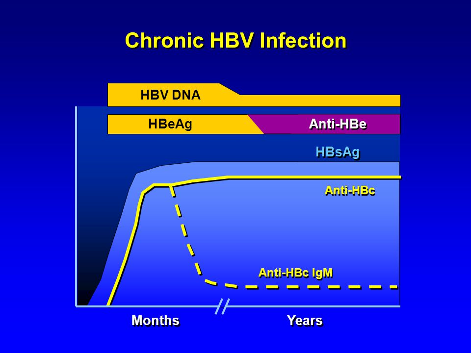 Chronic HBV Infection HBV DNA HBeAg Months Years Anti-HBe HBsAg
