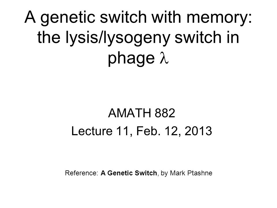 A genetic switch with memory: the lysis/lysogeny switch in phage 