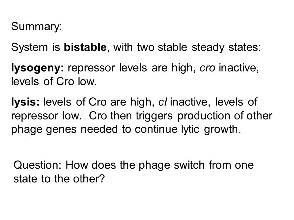 Summary: System is bistable, with two stable steady states: lysogeny: repressor levels are high, cro inactive, levels of Cro low.