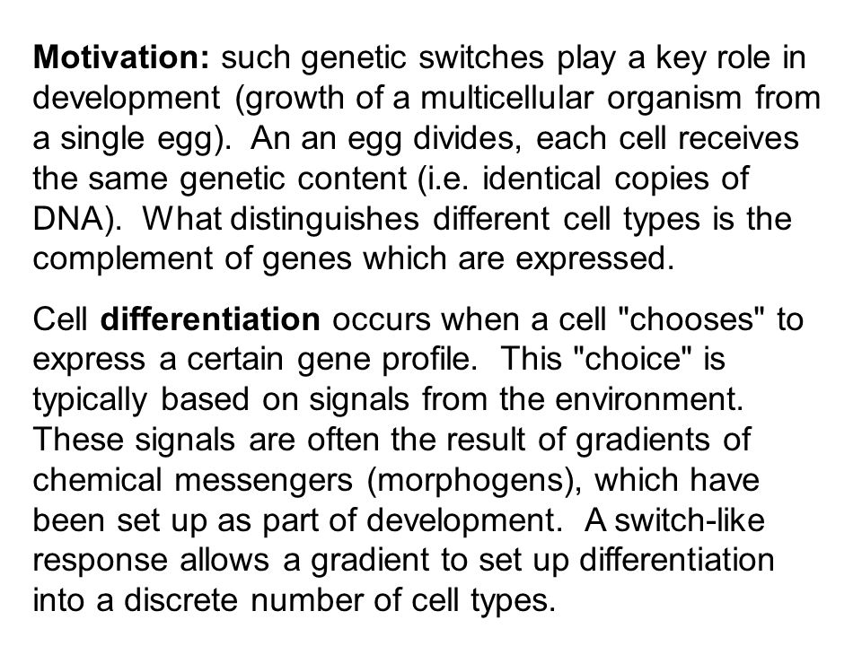 Motivation: such genetic switches play a key role in development (growth of a multicellular organism from a single egg). An an egg divides, each cell receives the same genetic content (i.e. identical copies of DNA). What distinguishes different cell types is the complement of genes which are expressed.