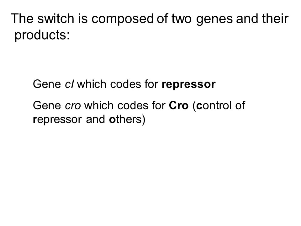 The switch is composed of two genes and their products: