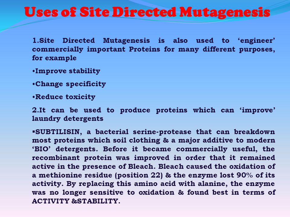 Uses of Site Directed Mutagenesis