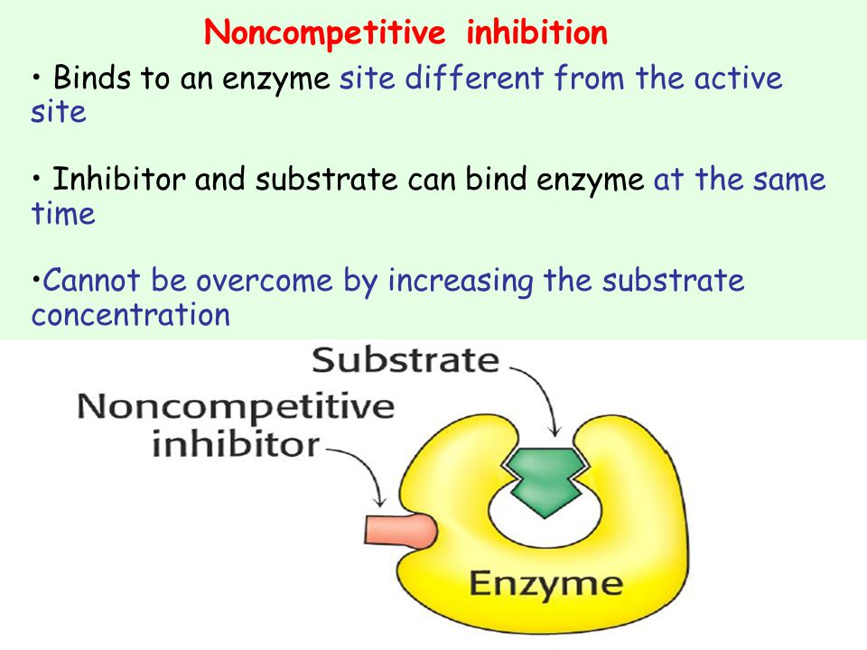 Noncompetitive inhibition