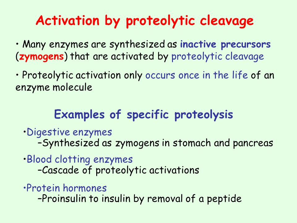 Examples of specific proteolysis