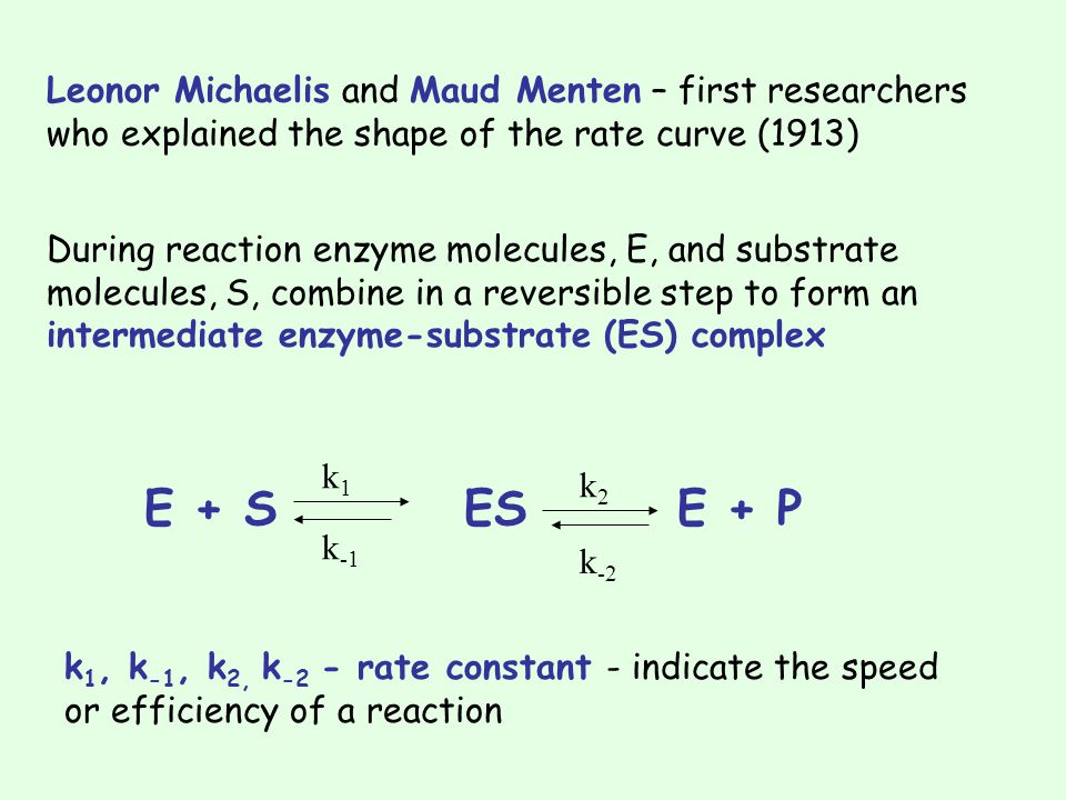Leonor Michaelis and Maud Menten – first researchers who explained the shape of the rate curve (1913)