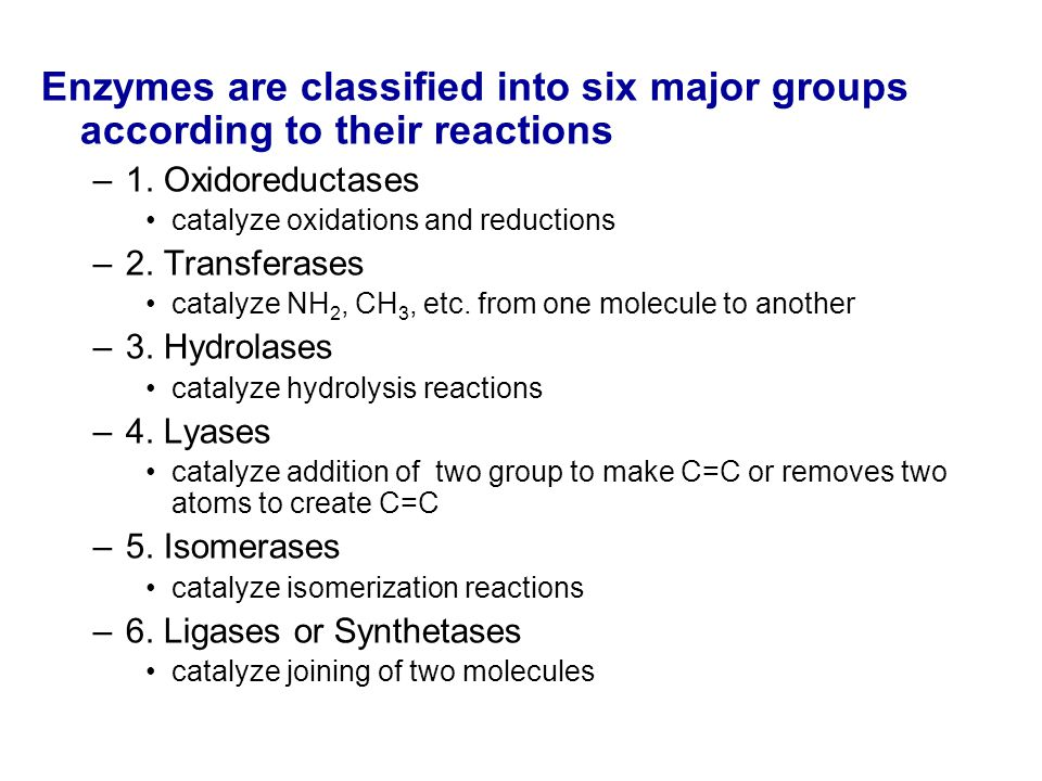 Enzymes are classified into six major groups according to their reactions