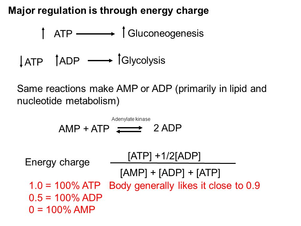 Major regulation is through energy charge