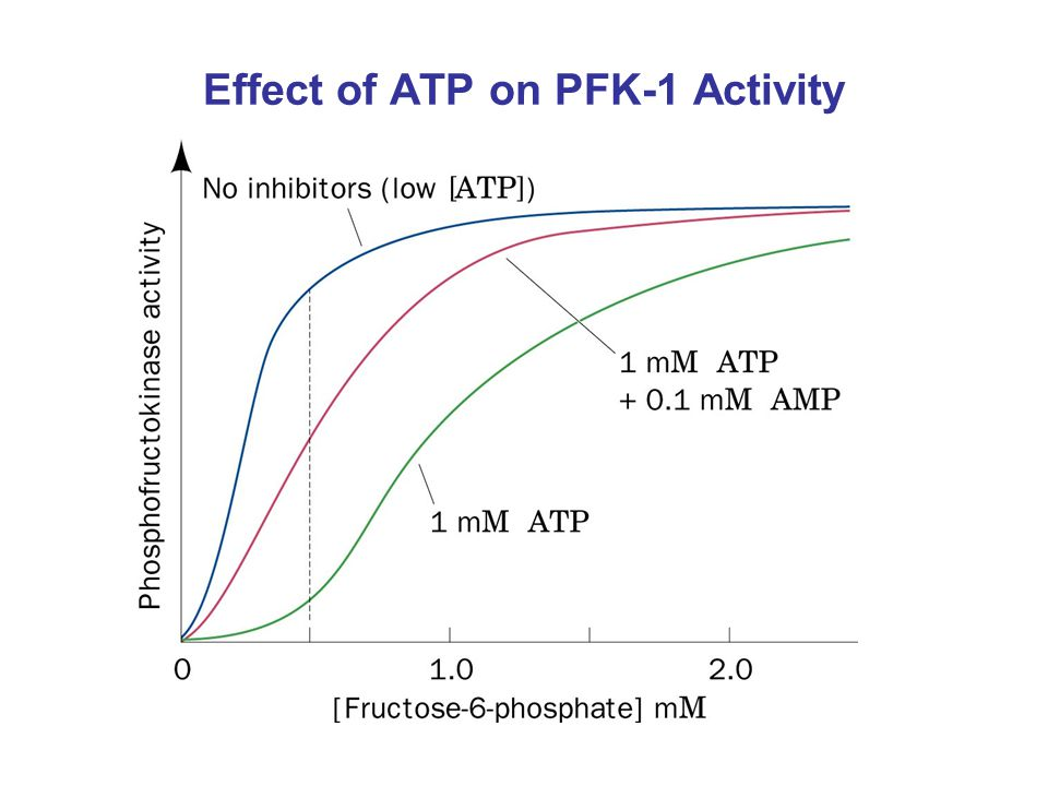 Effect of ATP on PFK-1 Activity