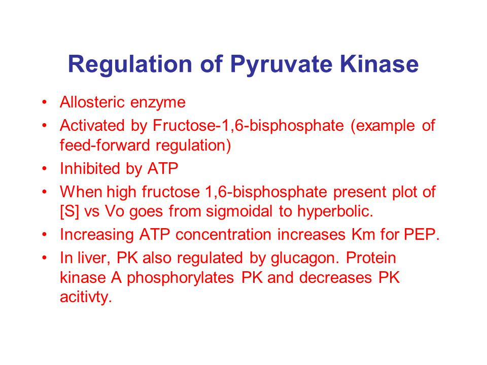 Regulation of Pyruvate Kinase