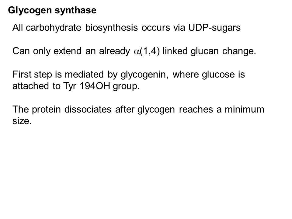 Glycogen synthase All carbohydrate biosynthesis occurs via UDP-sugars. Can only extend an already (1,4) linked glucan change.