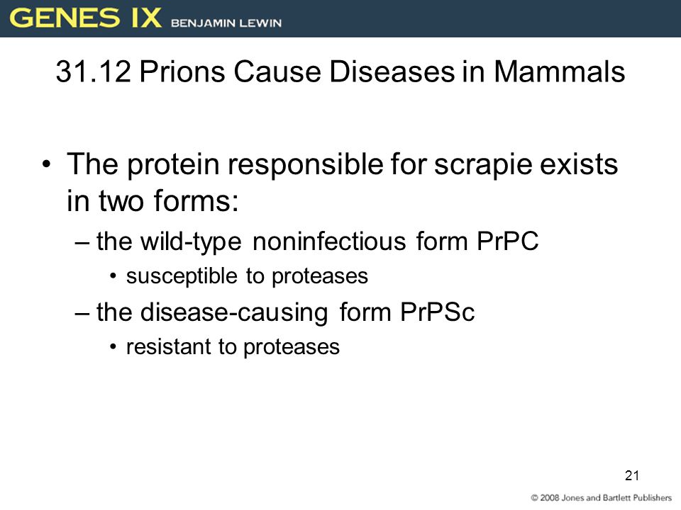 31.12 Prions Cause Diseases in Mammals