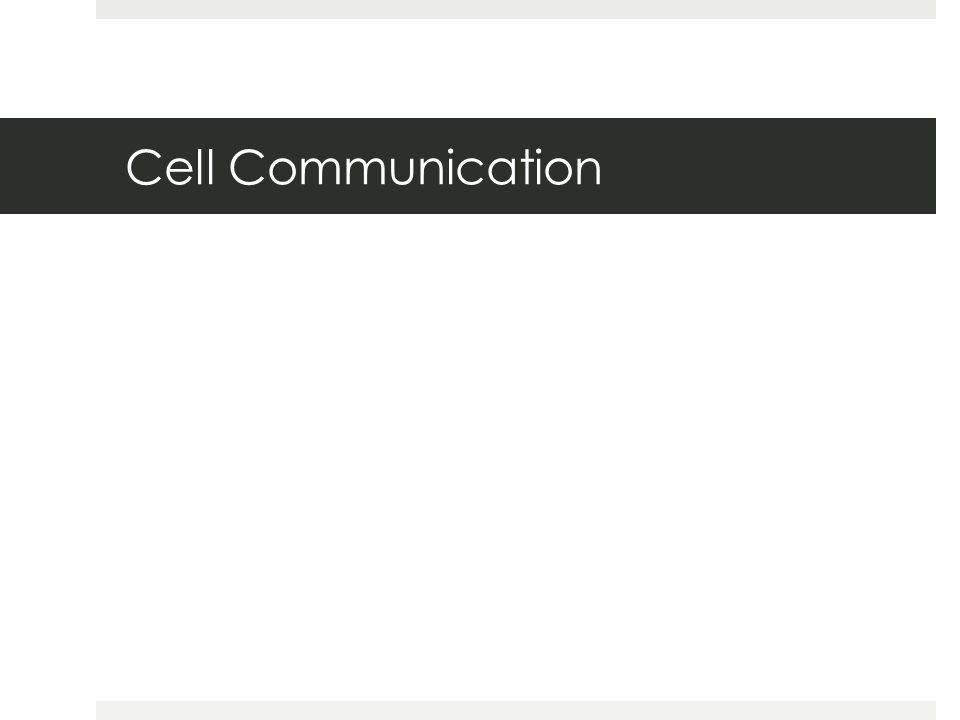 Chapter 11 Cell Communication Cell Communication
