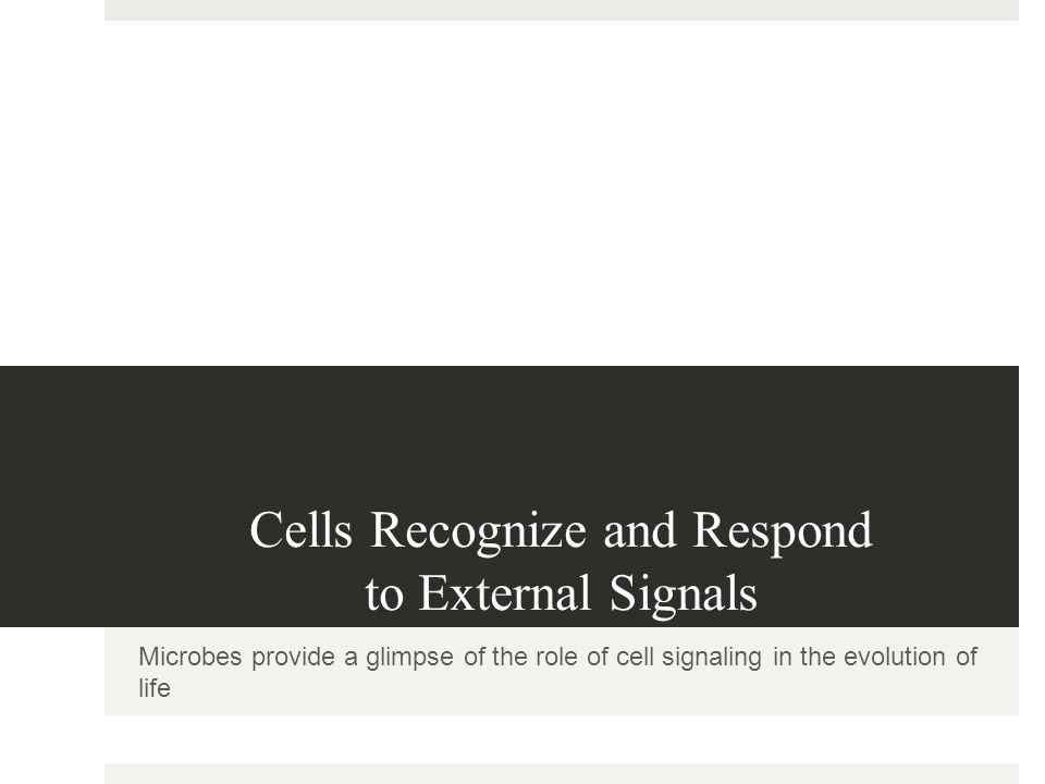 Cells Recognize and Respond to External Signals