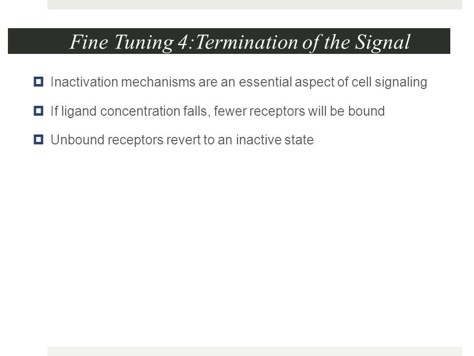 Fine Tuning 4:Termination of the Signal