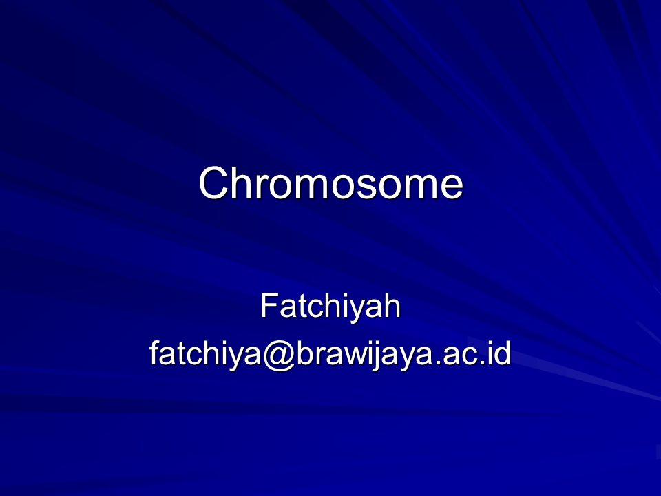 Fatchiyah fatchiya@brawijaya.ac.id