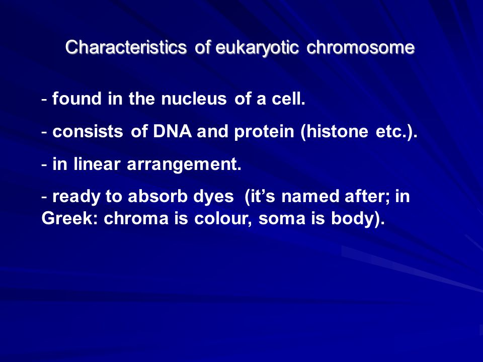 Characteristics of eukaryotic chromosome