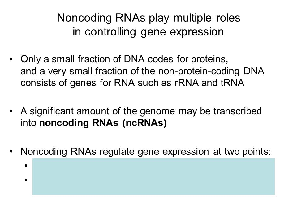 Noncoding RNAs play multiple roles in controlling gene expression