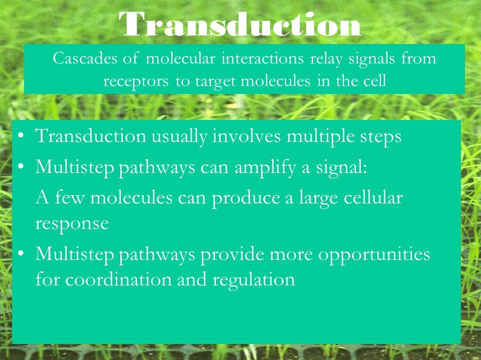 Transduction Transduction usually involves multiple steps