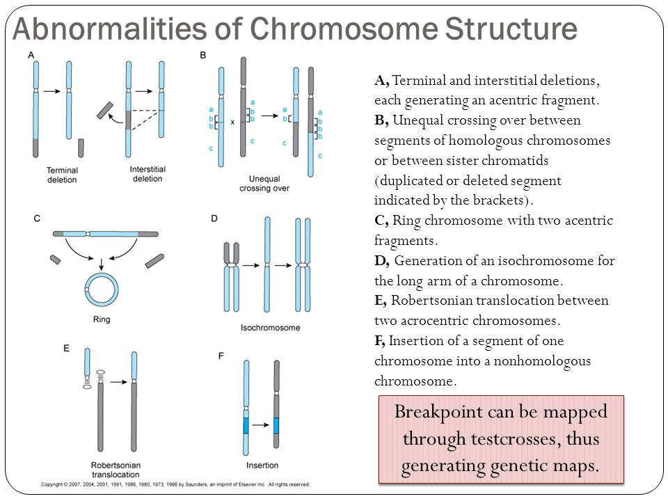 Abnormalities of Chromosome Structure