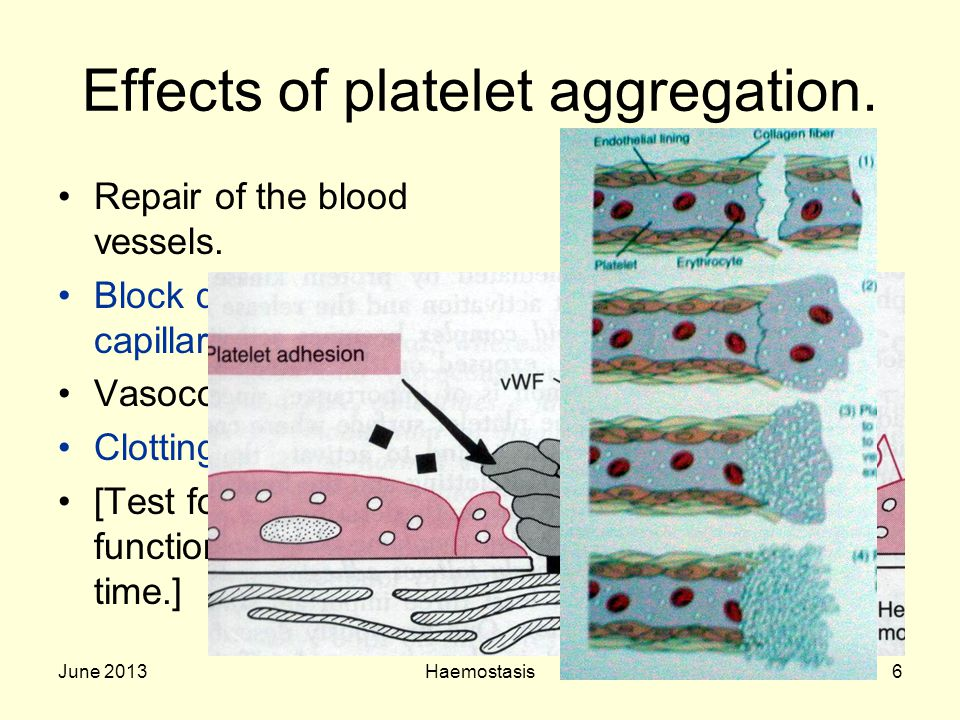 Effects of platelet aggregation.