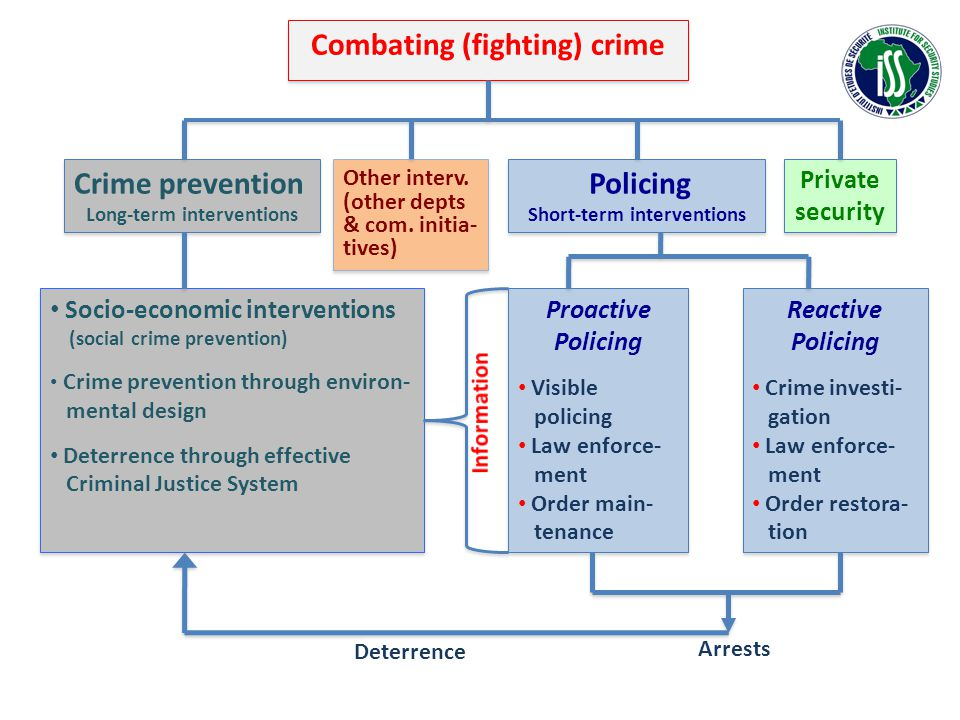 Combating (fighting) crime Policing