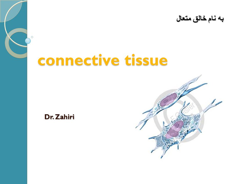 به نام خالق متعال connective tissue Dr. Zahiri