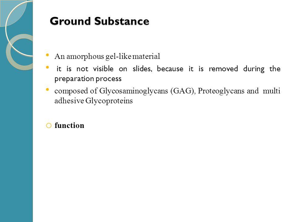 Ground Substance An amorphous gel-like material