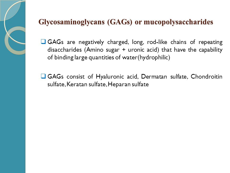 Glycosaminoglycans (GAGs) or mucopolysaccharides